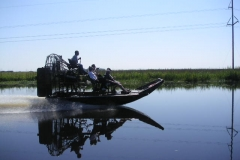 Air-boating in New Orleans